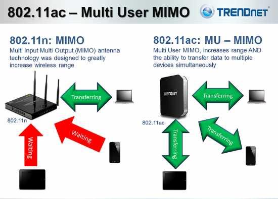 TrendNet-MIMO